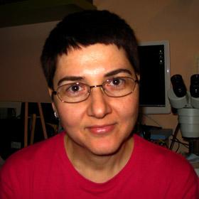Dr Dragana Filipović